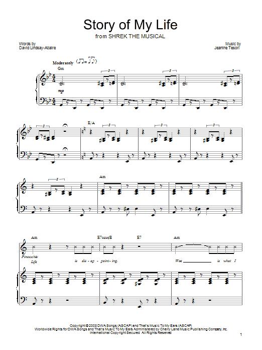 fun some nights piano vocal guitar ebook