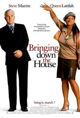 bringing down the house ebook