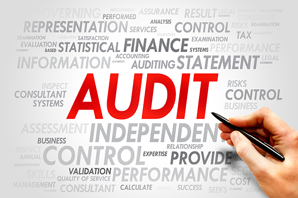 auditing and assurance services in australia ebook