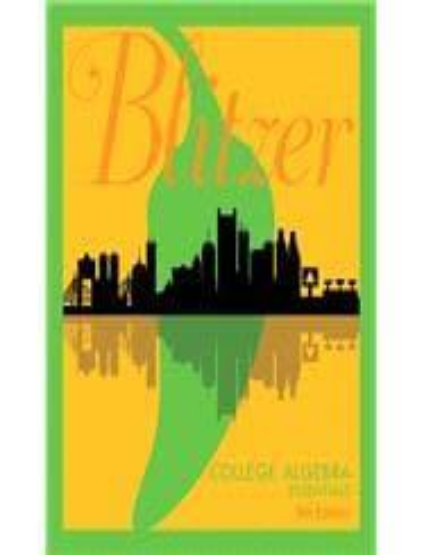 blitzer algebra and trigonometry 5th edition ebook