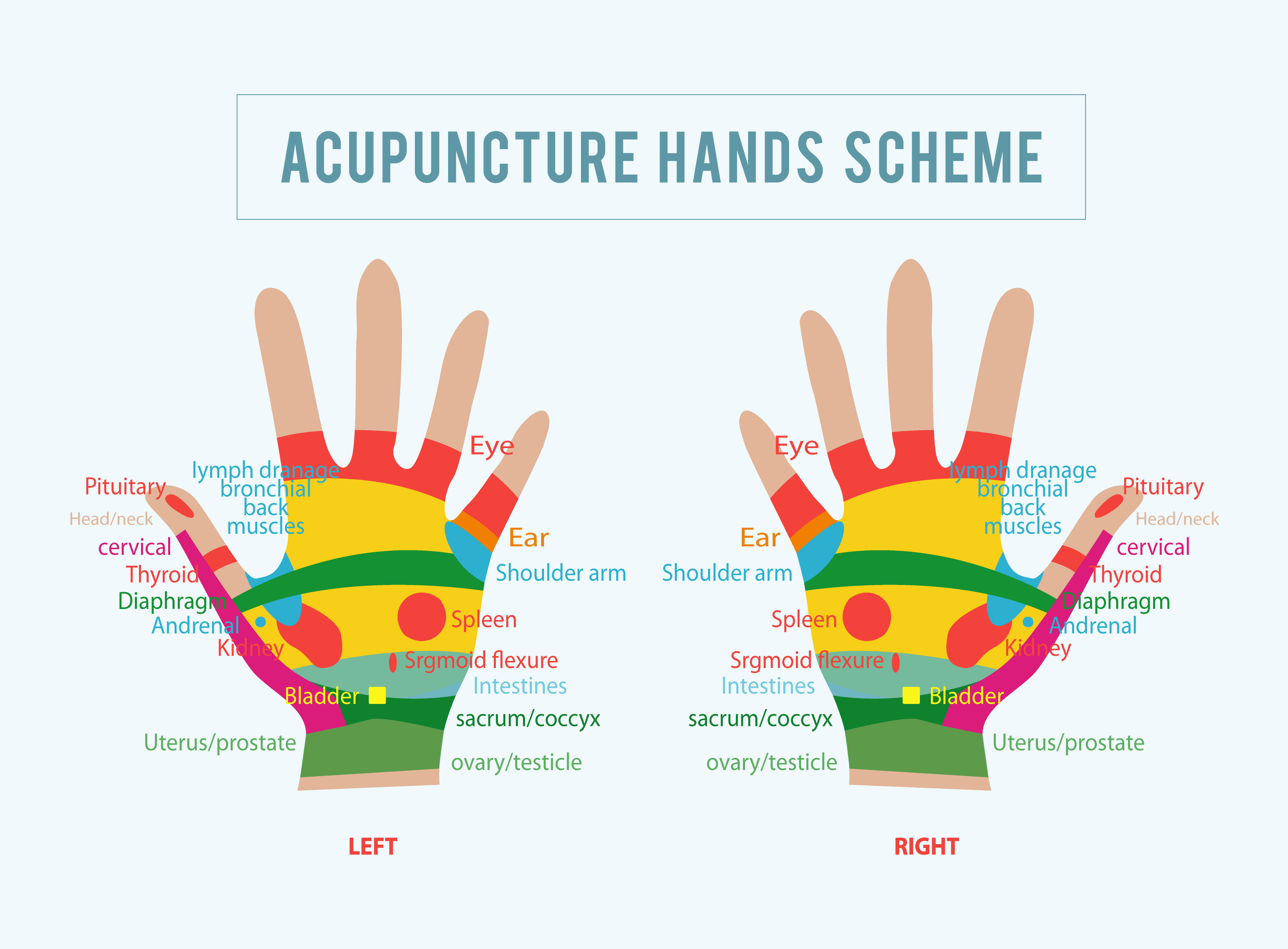 clinical acupuncture ebook free download