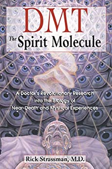 dmt and the soul of prophecy epub