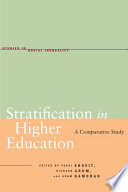 social stratification and inequality ebook