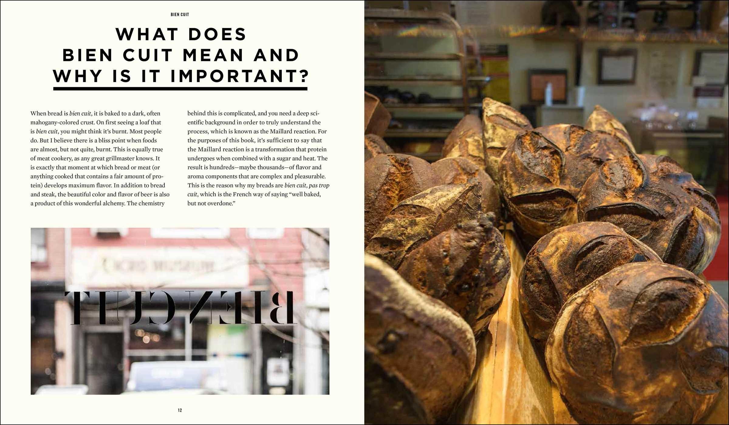 the art of fermentation epub